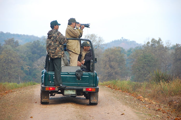Gallery of photos taken by Digvijaya Singh in Kanha National Park